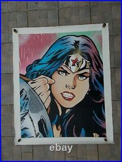 FUR Wonder Woman Grande Peinture Originale sur Toile, Street Art Graffiti